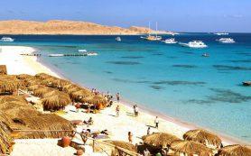 Эксперты из России успеют проверить аэропорты Египта до конца года