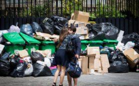 Улицы Парижа завалены мусором. Крысы счастливы, французы в шоке