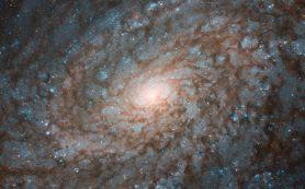 «Хаббл» наблюдает спиральную галактику, похожую на облако, на новом снимке