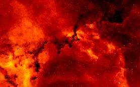 Наблюдаемые новые являются лишь «мгновением ока» в цикле жизни двойной звезды