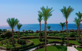 Египет открывает туристам курорты Красного моря. Какие перспективы у россиян?