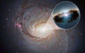 Короны сверхмассивных черных дыр могут являться источниками космических нейтрино