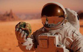 Если бы космос не был таким опасным, бактерии стали бы в нем более смертоносными