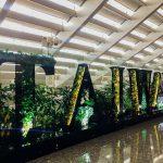 У жителей Тайваня появилась возможность фальшивых путешествий за границу