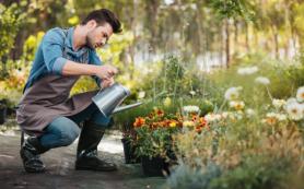 Безопасное садоводство