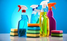 Экологичные чистящие средства: характерные особенности