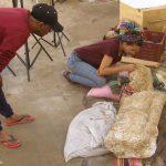 Египтологи рассказали об удивительных находках в храме Сераписа