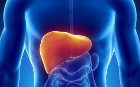 Что такое Гепатит? Симптомы, причины заболевания, лечение