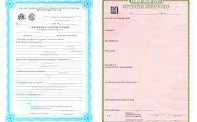 Процедура осуществления сертификации