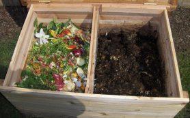 Компостирование — это так просто! ЭКО переработка органических отходов