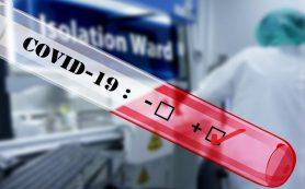 Как в аэропортах отличают фальшивые тесты на COVID-19 от настоящих?