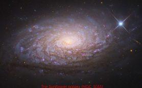 Уникальный прогноз «модифицированной гравитации» бросает вызов темной материи
