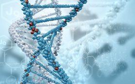 Преимущество молекулярных исследований