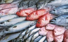 Приобретаем всегда качественную рыбу