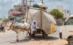 Все больше стран вводят ограничения на поездки в Индию