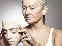 Ученые предложили иммунотерапию эффектов старения