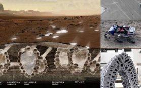 Стаи роботов будут строить города под поверхностью Марса