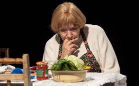 Елена Санаева сыграла в Воронеже «домашний» спектакль о войне