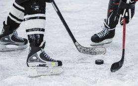 Швеция и Дания примут ЧМ-2025 по хоккею