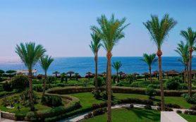 Власти Египта разрешили привитым туристам въезд в страну без ПЦР-тестов