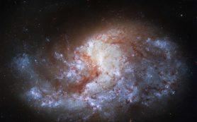 «Хаббл» наблюдает галактику «в печи»