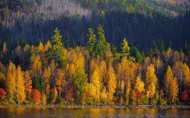 Плюсы осеннего отпуска и почему путешествовать осенью выгодно
