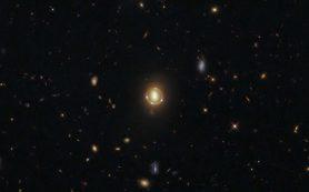 «Хаббл» запечатлел гравитационно-линзированный квазар