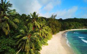 Фиджи откроет границы раньше, чем планировалось