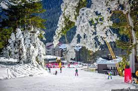 Почти весь номерной фонд курортов КЧР забронировали на новогодние праздники